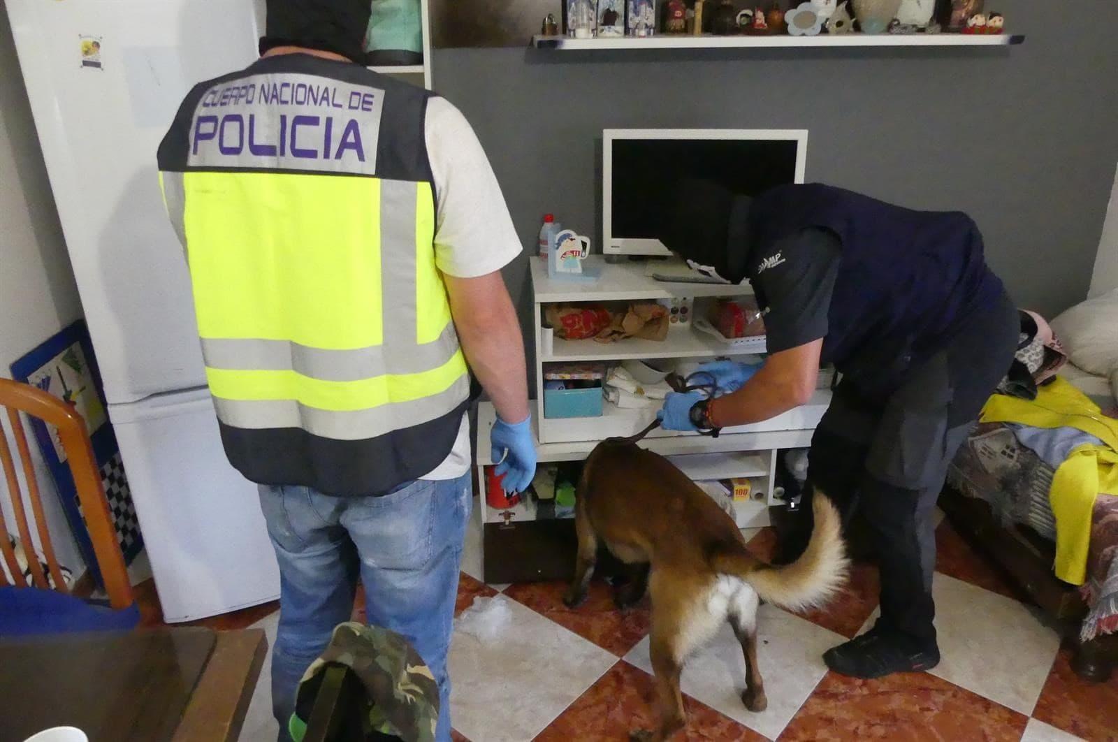 Desarticulan a una banda dedicada al menudeo de droga en Las Albarizas