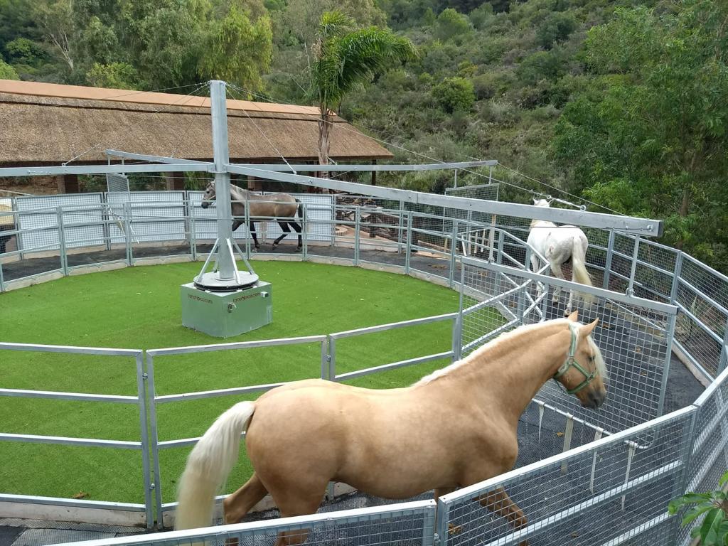 El Centro Hípico El Repique será un importante atractivo turístico en Marbella