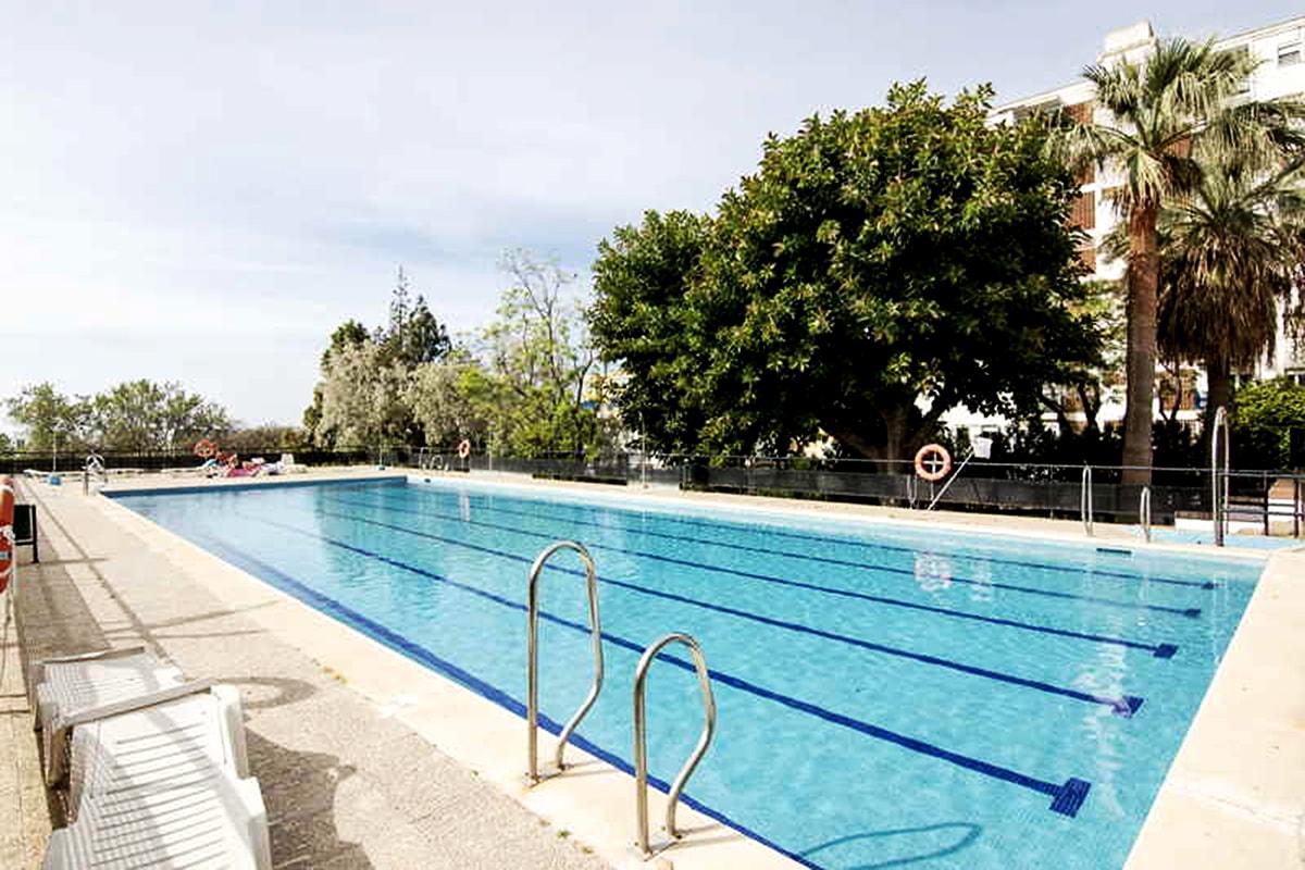 El 'Programa Adelante' del Campamento de Verano del Club Natación Marbella comienza el 1 de julio