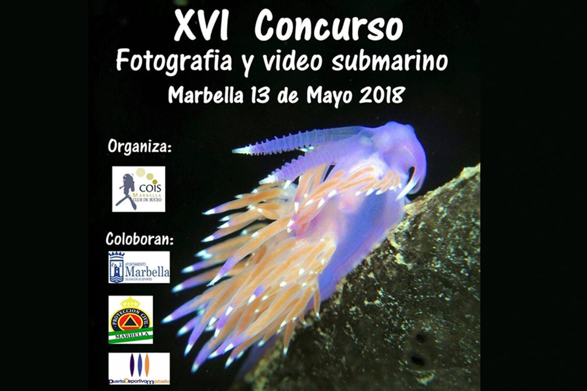El XVI Concurso de Fotografía y Vídeo Submarino tendrá lugar el 13 de mayo
