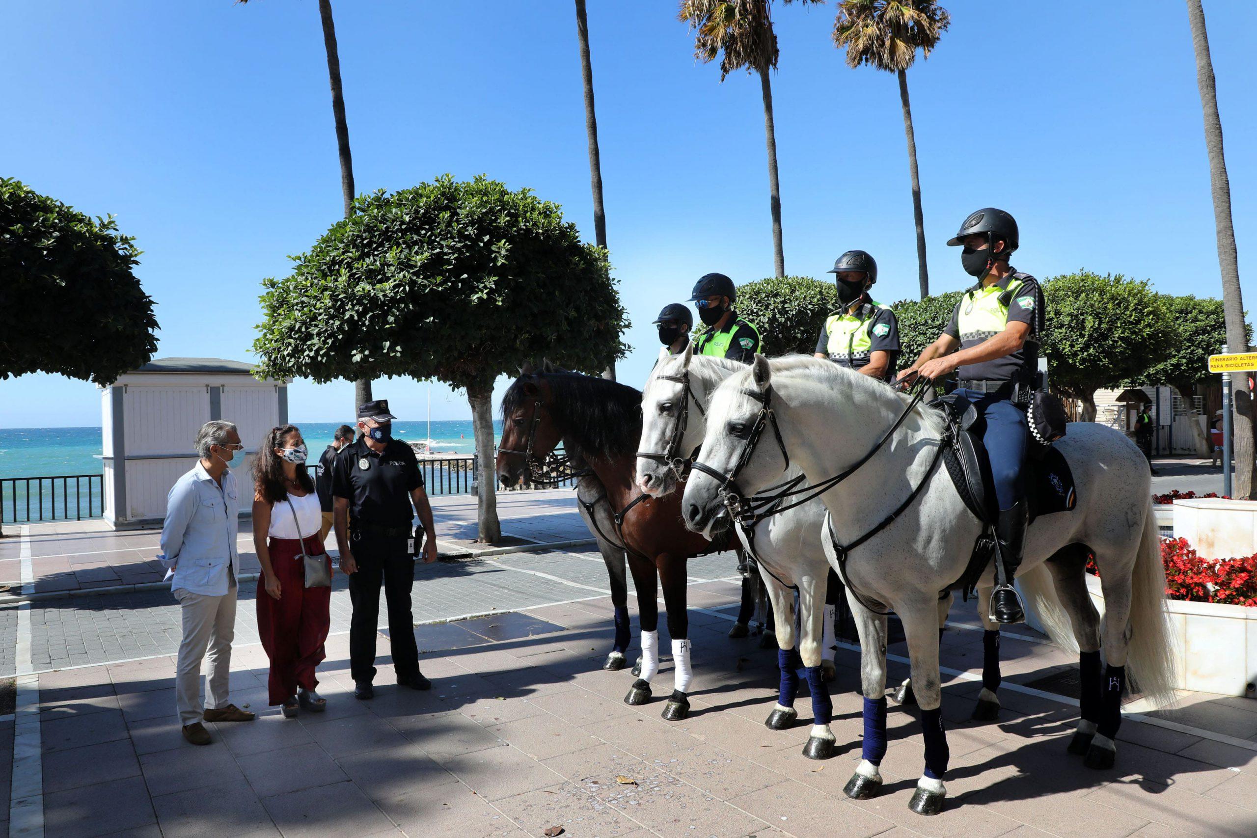 La Policía Local amplía el Escuadrón de Caballería con cuatro nuevos ejemplares