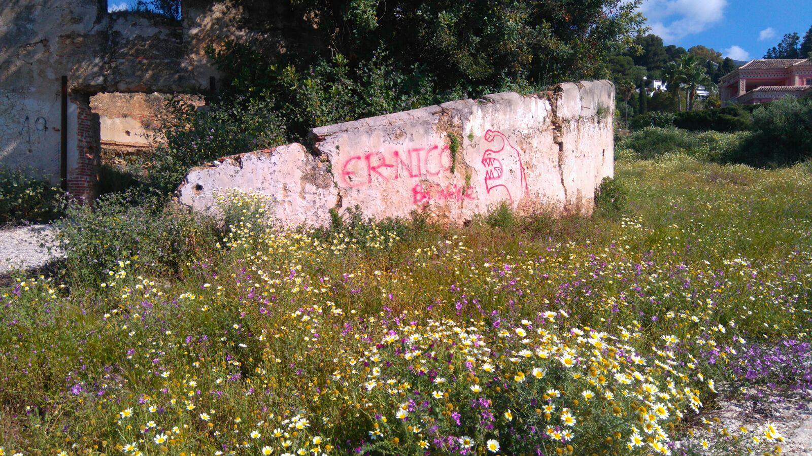 Nuevos actos vandálicos con más graffitis en el Trapiche del Prado