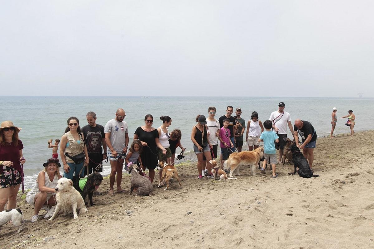 Las playas para mascotas siguen sin el equipamiento prometido por el PP en enero de este año, según IU