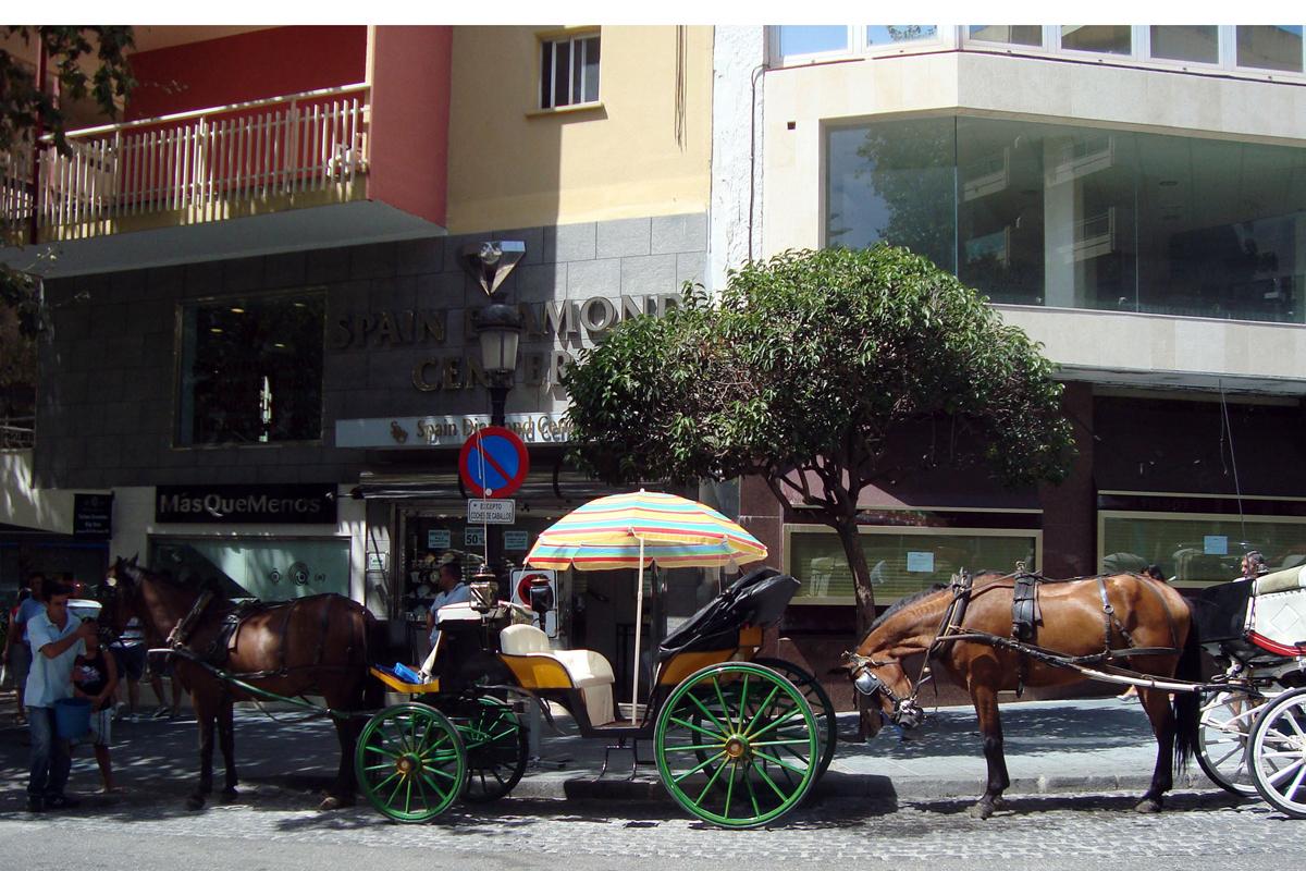 Rescate a las licencias de coches de caballos