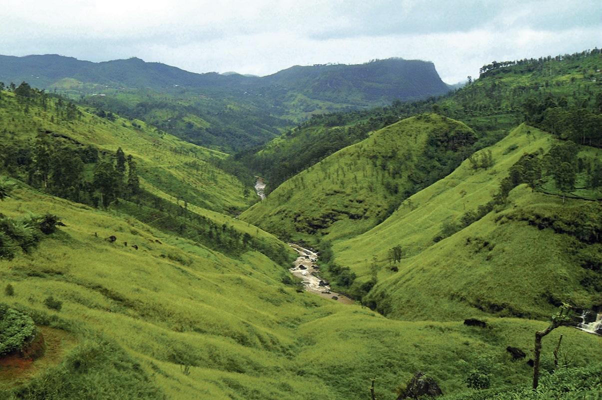 Sri Lanka, la joya oculta por descubrir del Índico