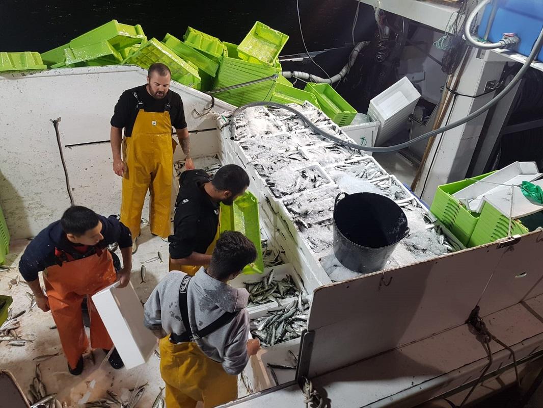 Las embarcaciones de cerco de Marbella inmersas en la primera de las paradas biologicas de 2021