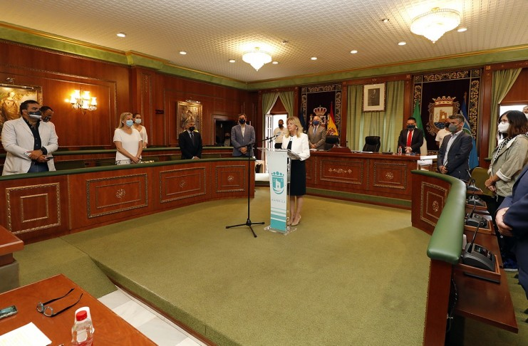 Pleno Municipal Marbella